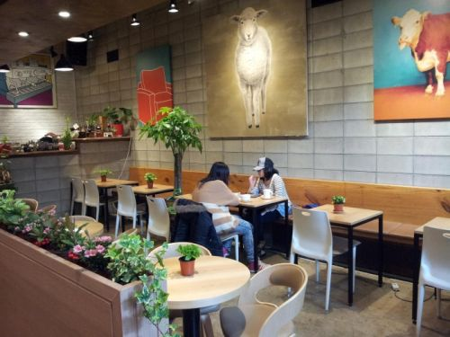 kafe korea